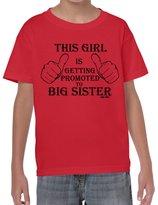 StarliteFunnyShirts Promoted to Big Sister-Girls-Kids Funny Sayings tshirts