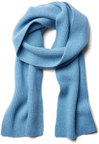 Portolano Men's Solid Scarf, Light Blue