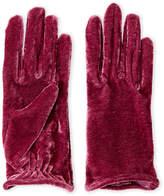 Portolano Velvet Gloves