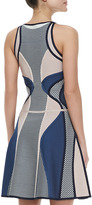 Herve Leger Netted Printed Bandage Dress
