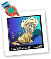 3dRose LLC qs_1825_1 Londons Times Funny Science Cartoons - Science Lab - Quilt Squares