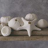 Porcelain Sea Life Candleholder
