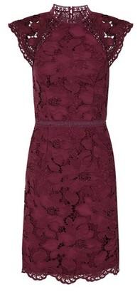 Dorothy Perkins Womens Chi Chi London Burgundy Crochet Bodycon Dress