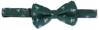 Isaia Kids Floral Print Bow Tie