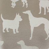 Osborne & Little - Grand Tour Collection - Best In Show Wallpaper - W618101