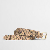 J.Crew Factory Cheetah calf hair belt