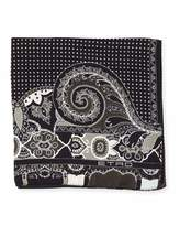 Etro Paisley/Dot Silk Pocket Square