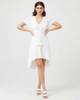 Le Château Embroidered V-Neck High-Low Dress