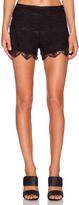 Saylor Sierra Shorts