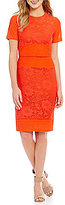 Daniel Cremieux Chandler Short Sleeve Lace Sheath Dress