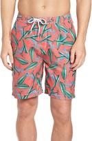 Men's Trunks Surf & Swim Co. Swami Birds Of Paradise Print Board Shorts