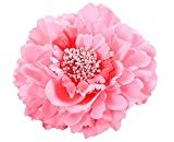 Pulison(TM) Peony Flower Hair Clips Wedding Bridal Bridesmaid Prom Festival Hairpin Brooch (L)