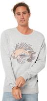Barney Cools Lion Fish Mens Knit Grey