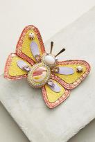 Bea Valdes Sunshine Bug Brooch