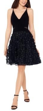 Xscape Evenings Applique Mesh Fit & Flare Dress
