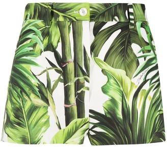 Dolce & Gabbana Leaf Print Short Shorts