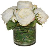 The French Bee Cabbage Roses In Cylinder Vase