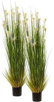 Rogue Artificial Sunny Grass Plant (Set of 2), 182cm