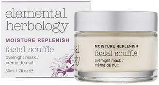 Elemental Herbology Facial Souffle Overnight Cream