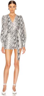 Cara ANDAMANE Belted Snake Print Playsuit in Grey | FWRD