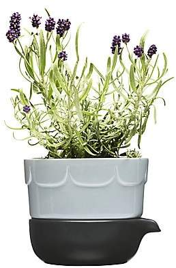 Sagaform Green Herb Pot - Blue