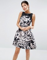 Coast Desdamonda Dress in Abstract Animal Print