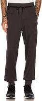 Yohji Yamamoto Branded FT Pants in Charcoal