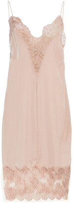 Stella McCartney Gabriela Leavers Lace-paneled Velvet Slip Dress