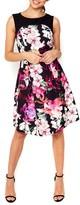 Wallis Women's Dotty Orchid Belted Fit & Flare Dress