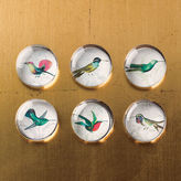 Glass Hummingbird Magnets