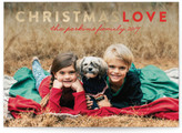 Minted Christmas Love Foil-Pressed Holiday Cards