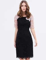 Review Amber Lace Dress