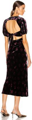 Rixo Daisy Dress in Bunch Shadow Floral   FWRD