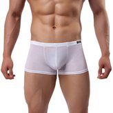 Acme Men's Sexy Low Rise Mesh See Through Breathable Boxer Underwear Briefs Size M