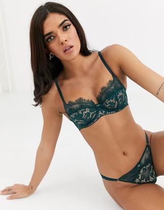 Ann Summers Love Me True lace bra in emerald-Green