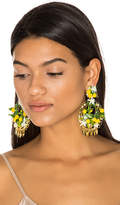 Mercedes Salazar Fiesta Lemon Earrings