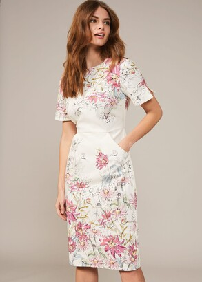 Phase Eight Marie Floral Fitted Dress