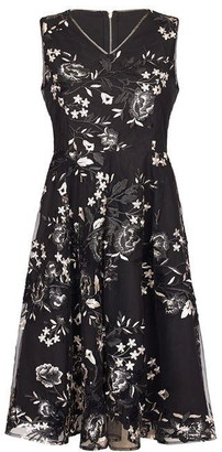 Yumi Embroidered Floral Skater Dress