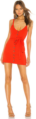 Privacy Please Shana Mini Dress