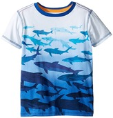 Hatley Shark Dip-Dye Graphic Tee Boy's T Shirt