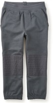 Tea Collection Toddler Boy's French Terry Moto Pants