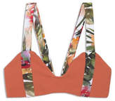 Boys + Arrows Dancin Dixie Bikini Top