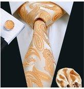 Hi Tie Hi-Tie Light Silk Necktie Set for Men Wedding