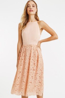 Oasis Dusty Pink Satin Bodice Lace Midi