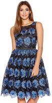 Quiz Blue And Black Mesh Floral Skater Dress