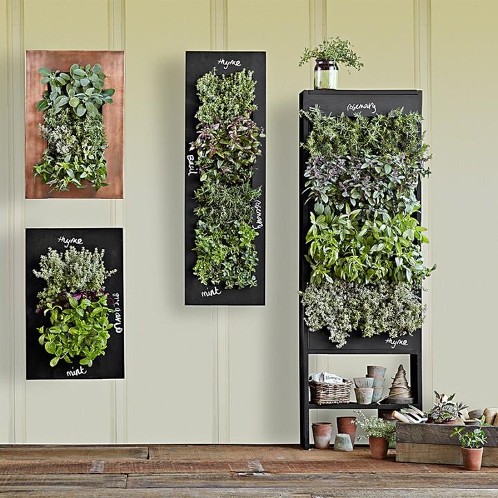 Williams-Sonoma Vertical Microgreen Planter