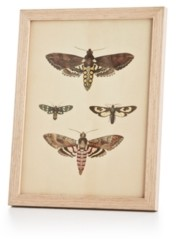 Twos Company Closeout! Two's Company English Garden Dragonfly Wall Art