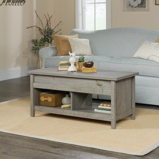 GreyleighTM Tilden Lift Top Coffee Table with Storage Greyleigh Color: Mystic Oak