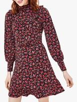 Oasis Rose Print Skater Dress, Red/Multi