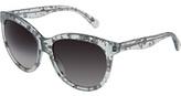 DG4149 Plastic Frame Fashion Sunglasses